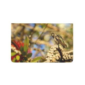 Female Anna's Hummingbird, California, Photo Journals