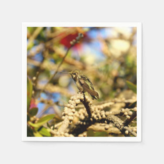 Female Anna's Hummingbird, Photo Cocktail Disposable Napkin