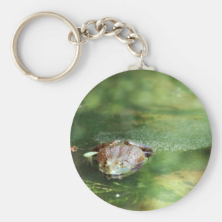 Female Bullfrog Laying Eggs Keychain