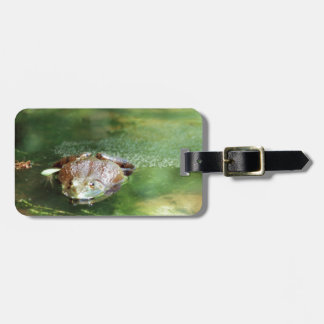 Female Bullfrog Laying Eggs Luggage Tag