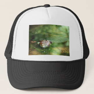 Female Bullfrog Laying Eggs Trucker Hat