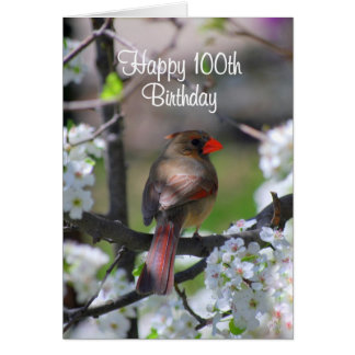 Female Cardinal 100th Birthday Card