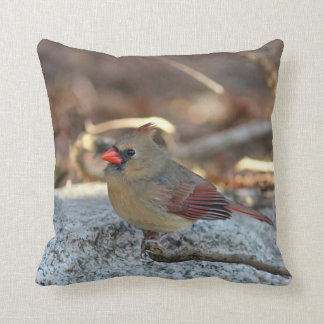 Female cardinal perched on a branch throw pillow