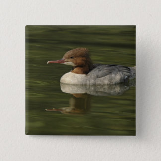 Female Common Merganser red headed sea duck 2 Inch Square Button