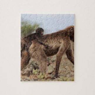 Female gelada baboon with a baby jigsaw puzzle
