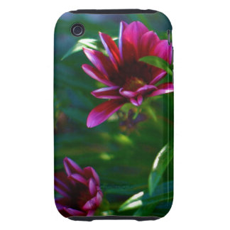 Female iPhone,iPod hard cover with Purple flowers