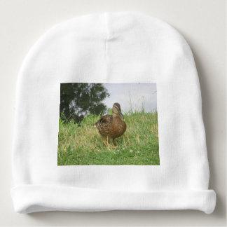 Female Mallard Duck Baby Beanie