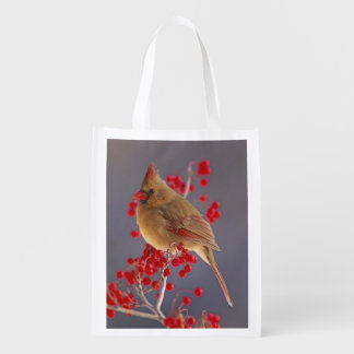 Female Northern Cardinal among hawthorn Reusable Grocery Bag