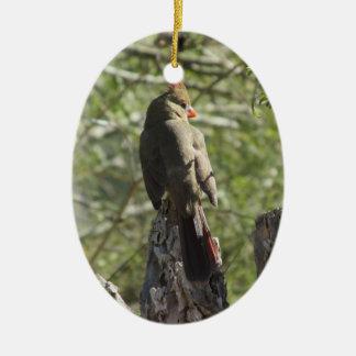 Female Northern Cardinal Ceramic Oval Ornament