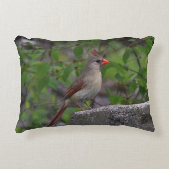 Female Northern Cardinal Decorative Pillow