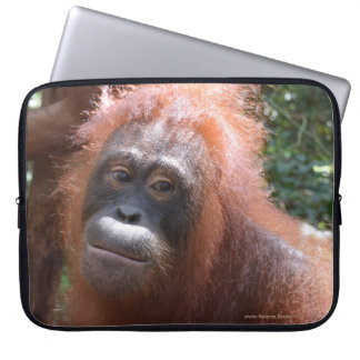 Female Orangutan in Borneo Computer Sleeves
