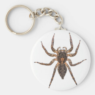 Female Pantropical Jumping Spider Keychain
