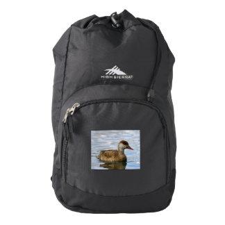 Female pochard duck, netta rufina backpack
