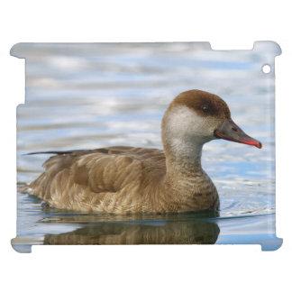Female pochard duck, netta rufina case for the iPad 2 3 4