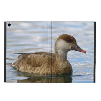 Female pochard duck, netta rufina cover for iPad air