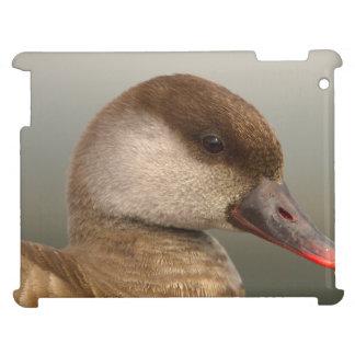 Female pochard duck, netta rufina iPad covers