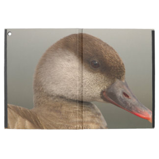 "Female pochard duck, netta rufina iPad pro 12.9"" case"