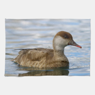 Female pochard duck, netta rufina kitchen towel