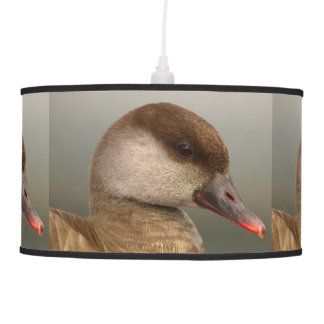 Female pochard duck, netta rufina pendant lamp