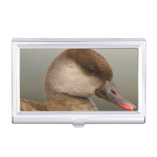 Female pochard duck, netta rufina, portrait business card cases
