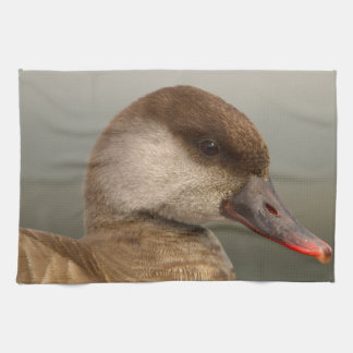 Female pochard duck, netta rufina, portrait kitchen towel