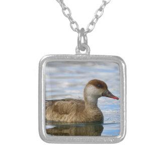 Female pochard duck, netta rufina silver plated necklace