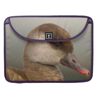 Female pochard duck, netta rufina sleeve for MacBook pro