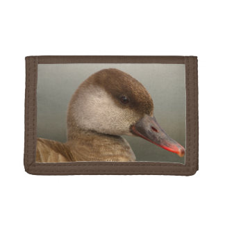 Female pochard duck, netta rufina trifold wallets