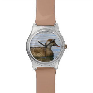 Female pochard duck, netta rufina wristwatch
