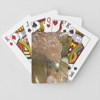 FEMALE RED TAILED HAWK PLAYING CARDS