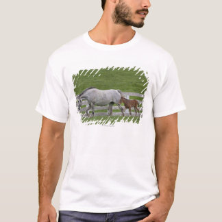 Female thoroughbred and young foal T-Shirt