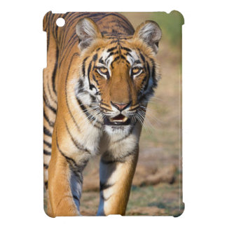 Female Tigress Stalking Prey iPad Mini Covers