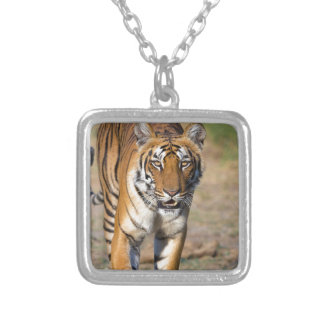 Female Tigress Stalking Prey Silver Plated Necklace