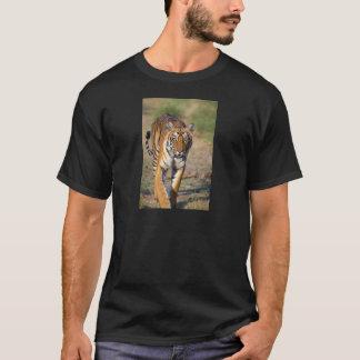 Female Tigress Stalking Prey T-Shirt