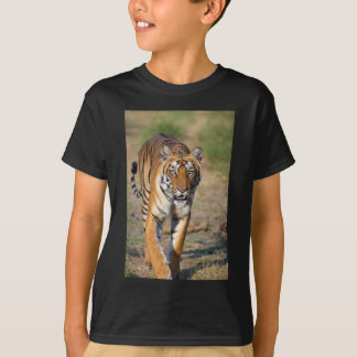 Female Tigress Stalking Prey T-Shirt