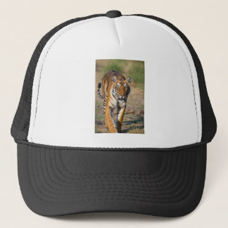 Female Tigress Stalking Prey Trucker Hat