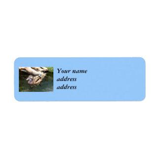 Female Wood Duck Return Address Label