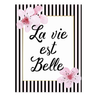 Feminine French Pink and Black Stripes and Flowers Postcard