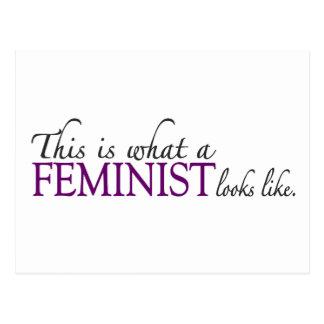 Feminist Looks Like Postcard