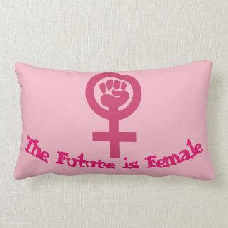 Feminist Pillow