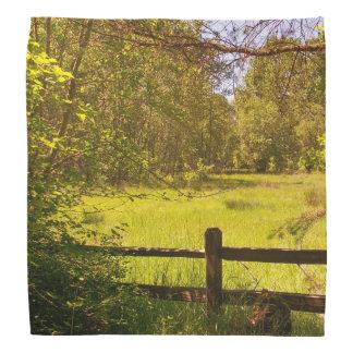 Fence at Oaks Bottom Kerchiefs