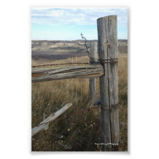 Fence Line Corner View Print