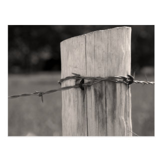 Fence Post and Barbed Wire Postcard