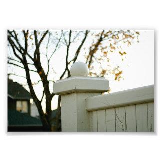 Fence Top Art Photo
