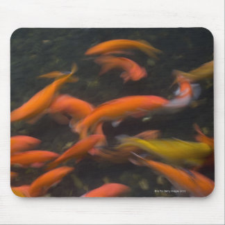 Feng Shui believe koi fish bring good luck. Mouse Pad