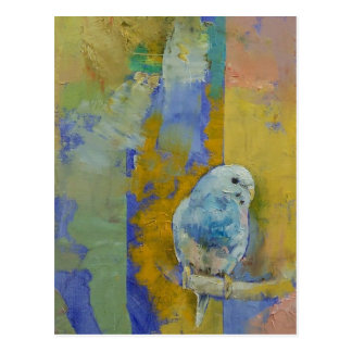 Feng Shui Parakeets Postcard
