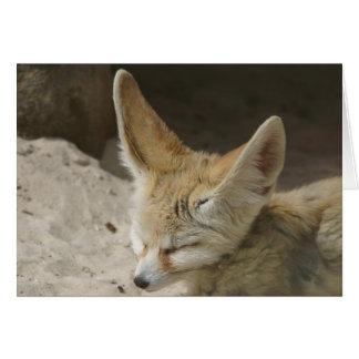 Fennec Fox Card