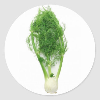 Fennel leaf and bulb classic round sticker