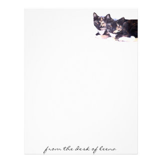 Feral Cat Family Letterhead