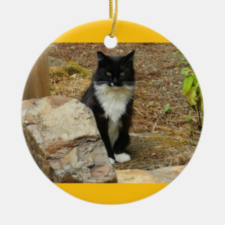 Feral Cat Momma Ceramic Ornament